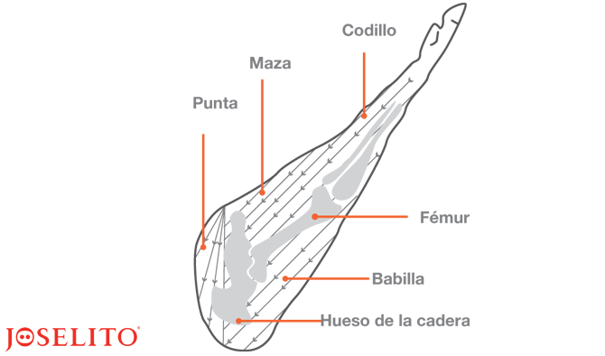 Each part of a Joselito ham is unique