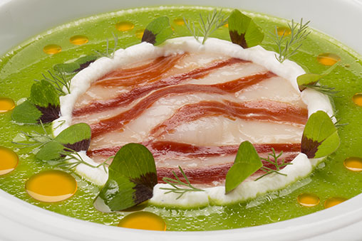 Scallops with Joselito Ham, Goat Milk Quark and French Bean Juice